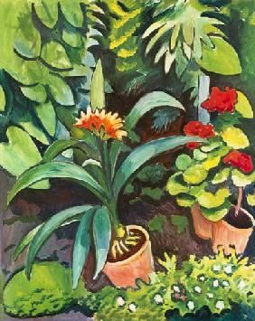 August Macke - Flowers in the garden - Clivia and Pelargonien