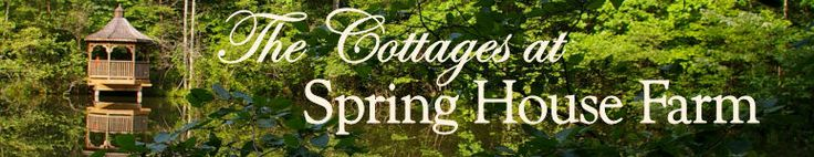 Spring House Farm Log Cabins near Asheville, NC!  Zee and Arthur have an amazing place in Marion, NC!!  It's our honeymoon spot and we plan to return for our first anniversary!  It's peace on earth...no phones, no internet, no TV, no interruptions; just peace, quiet and enjoyment!