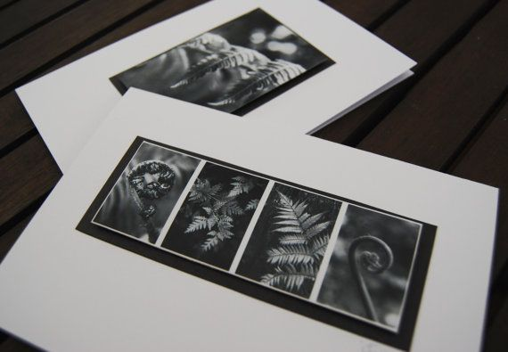 Gift Cards New Zealand Fern Photo Black and white by NewCreatioNZ, $8.00