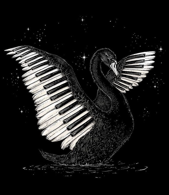 253 Best Images About Piano Music On Pinterest: 641 Best Images About BLACK And WHITE On Pinterest
