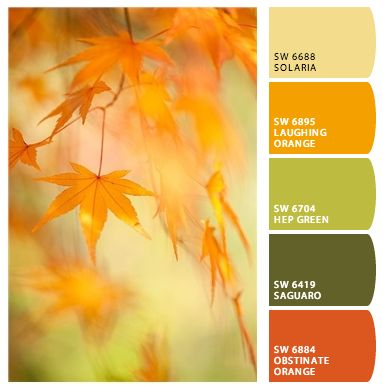 Fall paint colors inspired by nature.
