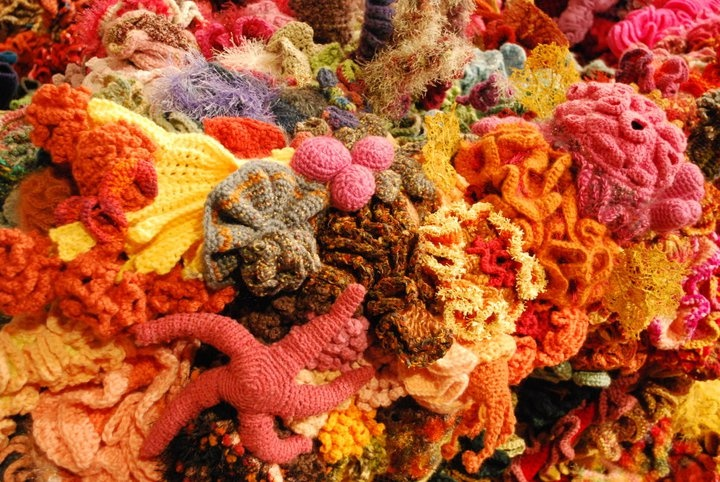 knit & crochet sea creatures / coral reef !