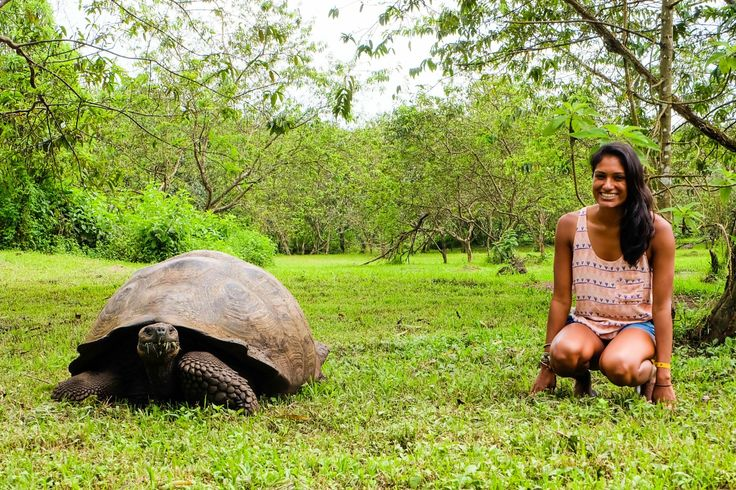 A Week in the Galapagos Islands http://www.southamericaperutours.com/southamerica/12-days-wonders-of-machu-picchu-and-galapagos.html
