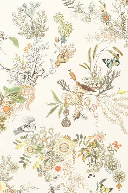 anthropologie topsy turvy wallpaper