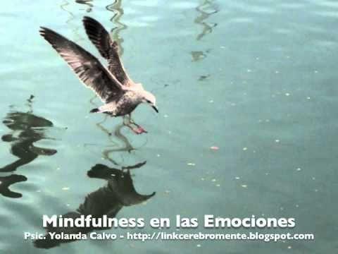 Mindfulness en las Emociones - YouTube