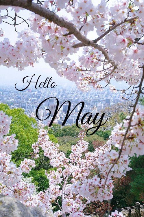 Attractive Hello May!