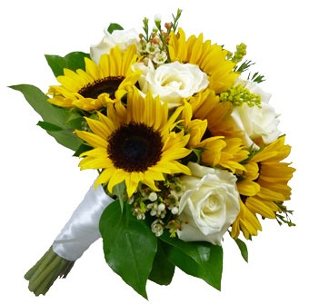 A Beautiful Sunflower Bride Bouquet With White Roses And Wax Flower