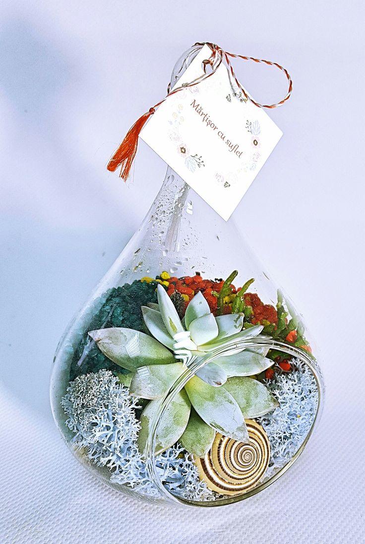 Mini terariu cu plante suculente în vas tip lacrimă/ mărțișor