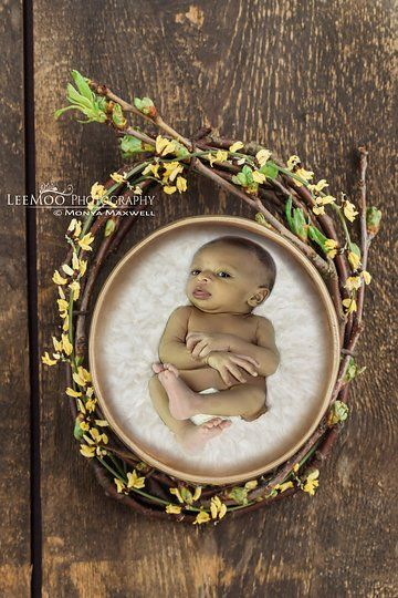 Photo from Baby boy Jan 2017 collection by LeeMoo photography