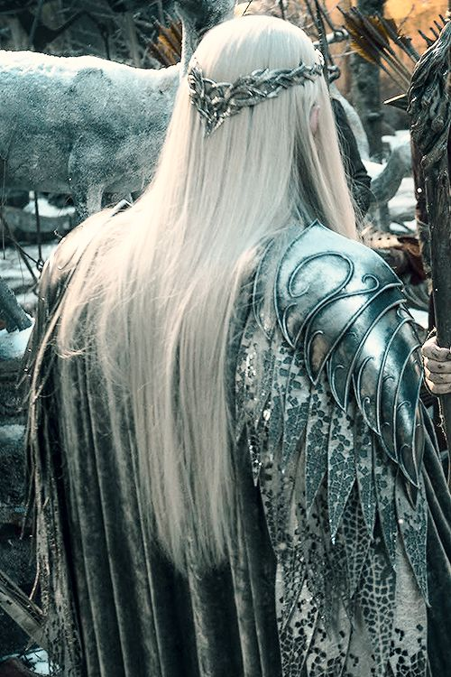 If I ever need a cape, this is the one for me. Thranduil | The Hobbit: The Battle of the Five Armies