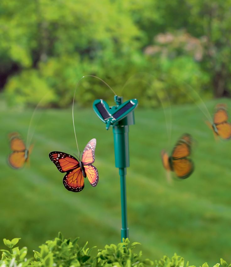 Love these GR Fluttering Garden Stakes that have a cute butterfly or dragon fly on thin wire fluttering around a green plastic garden stake. Stake has a small solar panel to recharge the battery so the decoration never stops fluttering #GR #GrasslandsRoad #Plastic #Straight #Garden #Stake #Green  #Hummingbird #Blue #Solar #Battery #Butterfly #DragonFly #Orange #Black #White #Purple #Pink #Yellow #Red #Violet #Small #GreatQuality Each decoration is gift boxed #GiftBox #GiftIdea #Wings #Cute