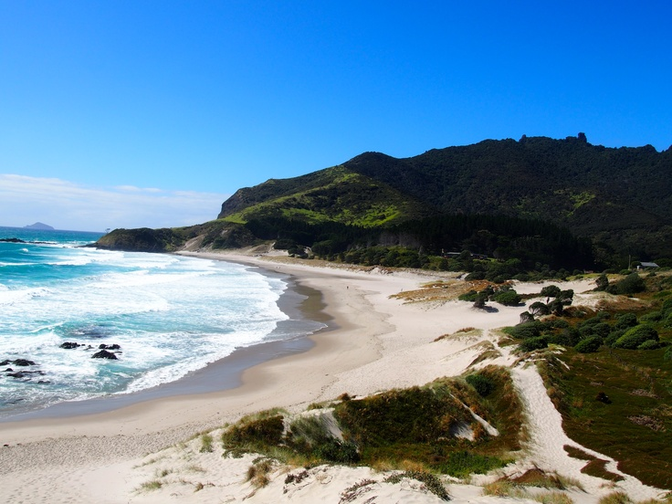 13. OCEAN BEACH. Simply the best.