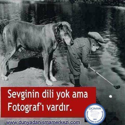 #sevgi #fotoğraf #dil #psikoloji #psikolog #danışmanlık #dunyapsikolojikdanışma #izmir #alsancak