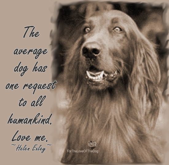 The average dog has one request to all humankind. Love me! – Helen Exley