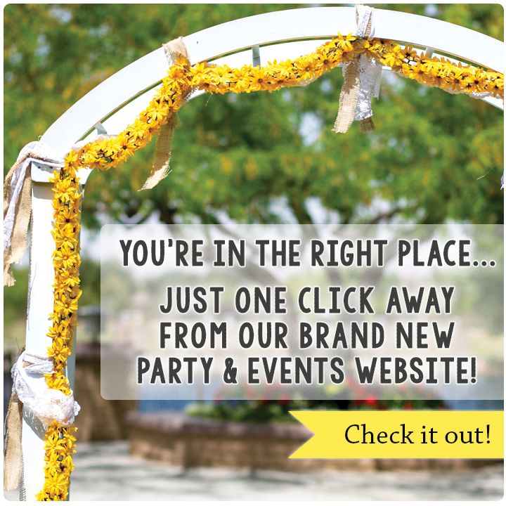Ultimate Party Supplies And Rental Store In City Of Nashville: Best 25+ Party Rental Supplies Ideas On Pinterest