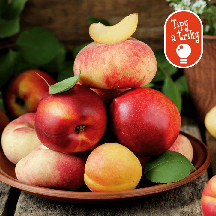 Viete. ako správne skladovať ovocie?  Základné pravidlo je, že ich skladujte vždy oddelene od zeleniny. Navyše jablká a broskyne uvoľňujú veľké množstvo etylénu, čím dochádza k rýchlejšiemu starnutiu a kazeniu sa susedných druhov ovocia.
