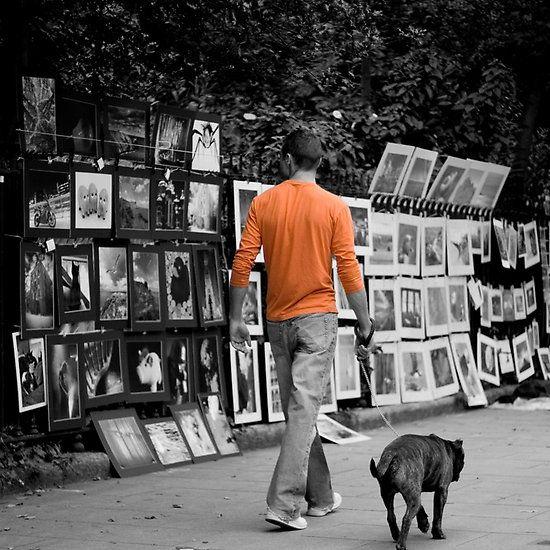 Walk on by, Dublin, Ireland. #walk #dog #selectivecolour #selectivecolor #photos