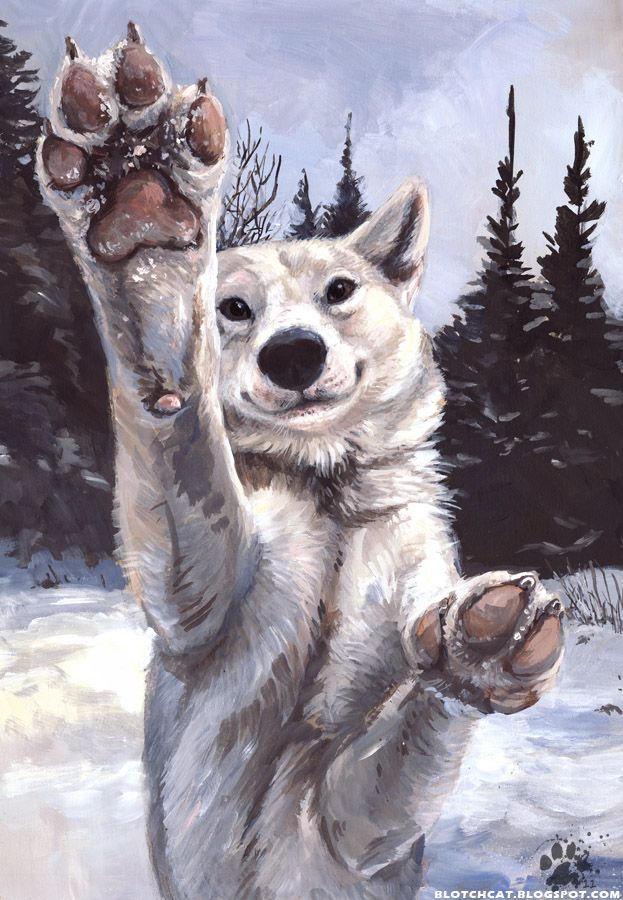Aww! One of the Riders wolves wants to maul you!