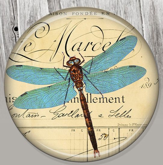 Vintage French Dragonfly Pocket Mirror, Photo Mirror, Compact Mirror Illustration Image