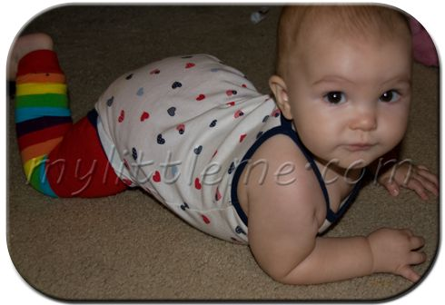 My Little Me says she may be addicted to BabyLegs! We understand :)Legs Warmers, Babylegs Com, Adorable Legs, Leg Warmers
