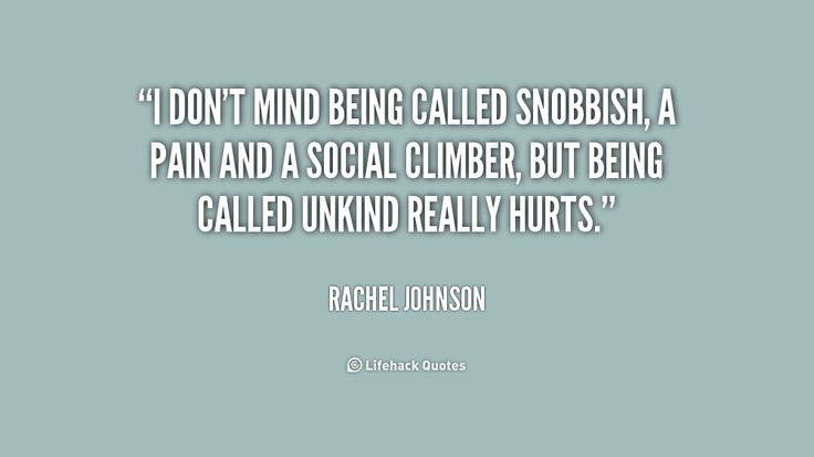 I don't mind being called snobbish, a pain and a social climber ...
