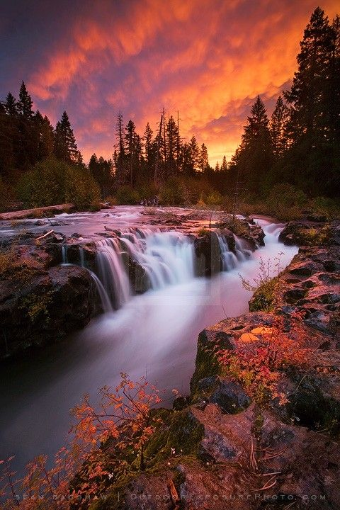 ~~Crimson Gorge, Rogue River, Oregon | dramatic sunset, conifer trees and rushing water | by Sean Bagshaw~~