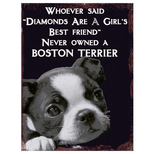 Boston Terrier Lovers metal Wall sign http://www.fabu-licious.com/vintage-best-friend-boston-terrier-wall-sign
