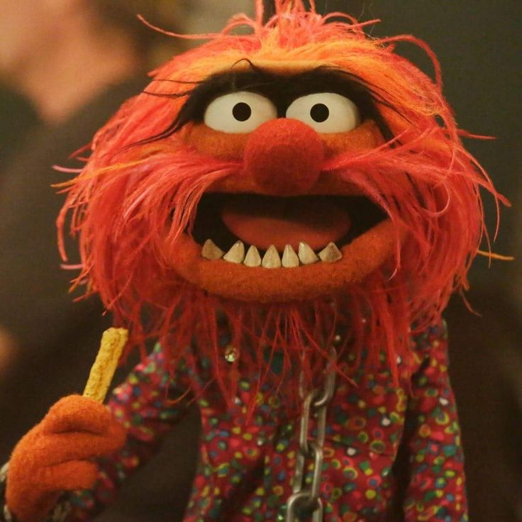 24 best muppets animal and sweetums images on pinterest - Animal muppet images ...