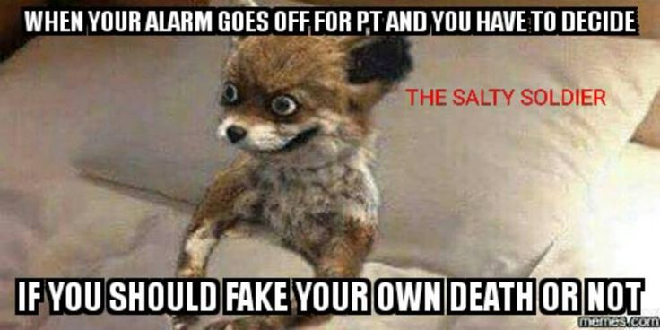 The 13 funniest military memes for the week of Jul. 29
