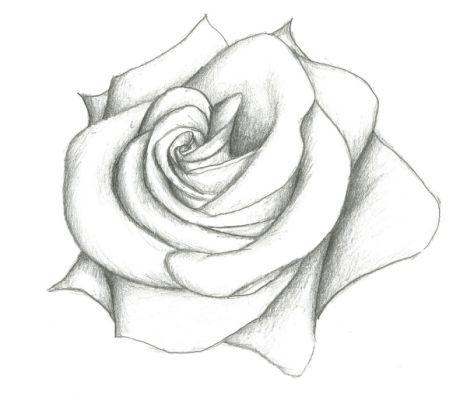 Drawings Tumblr Flowers Tumblr Schizzi Facili Disegni Semplici