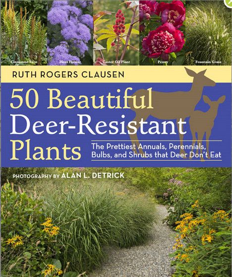 Planting Deer-Resistant Gardens is Possible : TreeHugger