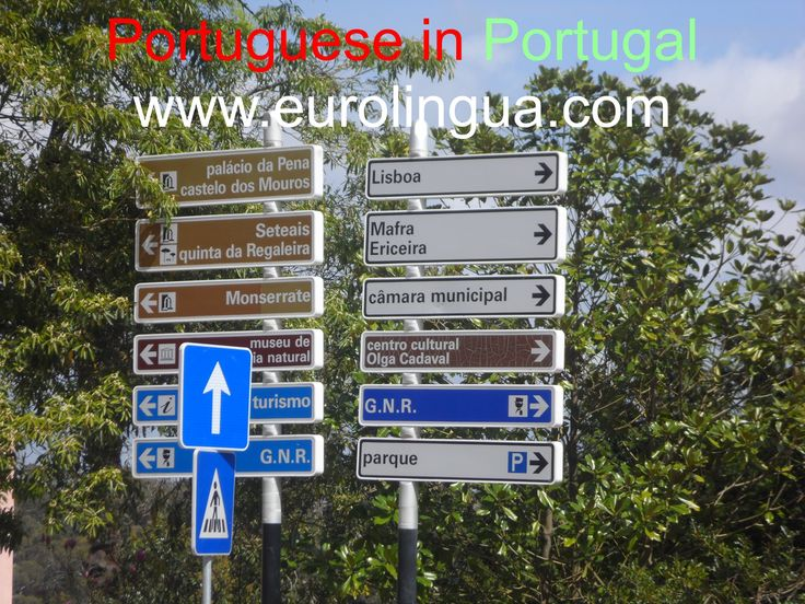 LEARN PORTUGUESE IN PORTUGAL: learn to speak fluently living full-board in the home of a Eurolingua One-to-One Portuguese Homestay Tutor. For motivated adults, executives, military, diplomats, retirees. Quality accommodation, all family meals, local visits and excursions. Return home speaking like a native!! For more information, follow the link.  http://www.eurolingua.com/portuguese/learn-portuguese-courses