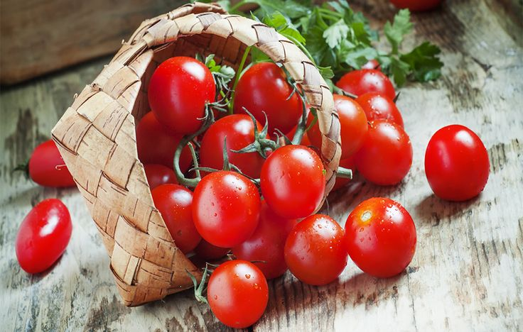 how to grow cherry tomatoes from cherry tomatoes
