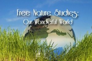 Free Nature Studies: Our Wonderful World - 32 weeks worth of Nature Studies for free!