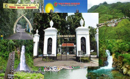 Tujuh Tempat Wisata di Bogor yang Memanjakan Mata