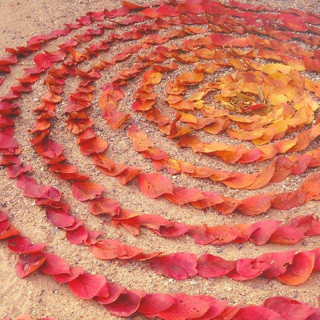 「最後の秋みつけた!ほっこり素敵な'落ち葉アート'が話題なんです♡」に含まれるinstagramの画像