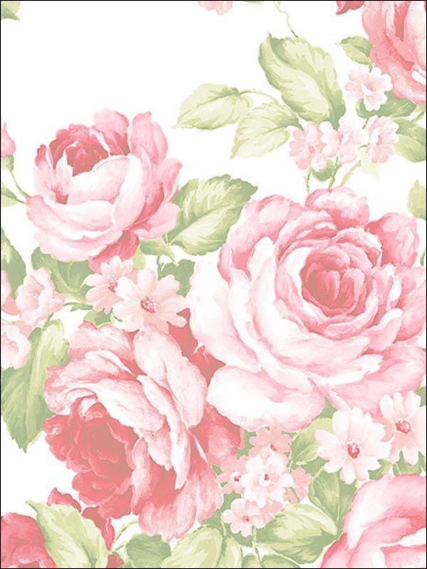 Floral Wallpaper Brand:Norwall Book:Abby Rose 2 Item #:WTG-082746 SRX89YX (Previous Item No.)