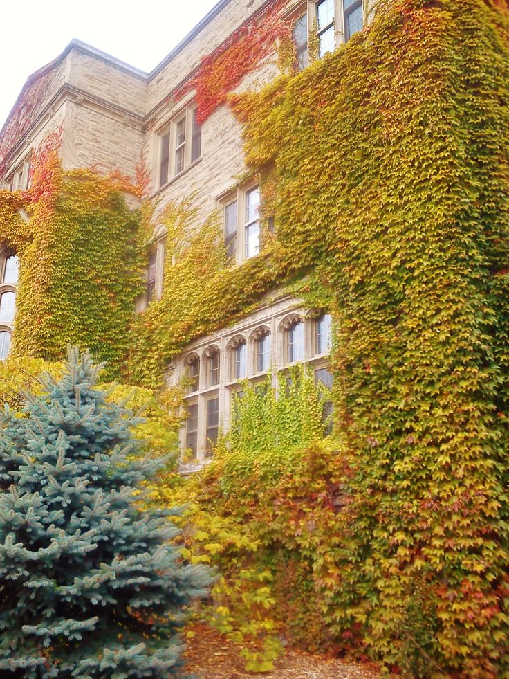 You can't take a bad photo of this gorgeous residence and UofG icon... Johnston Hall.