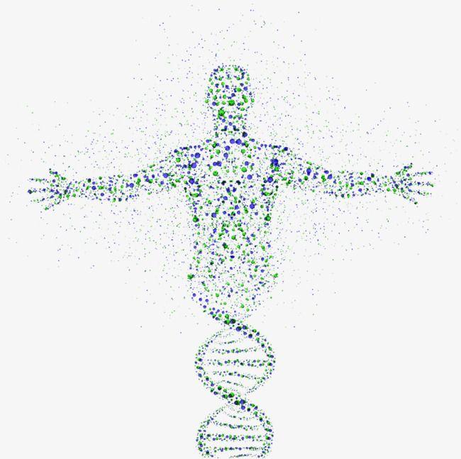 Human Dna Genetic Photos Png And Clipart Resim Tip Fikirler