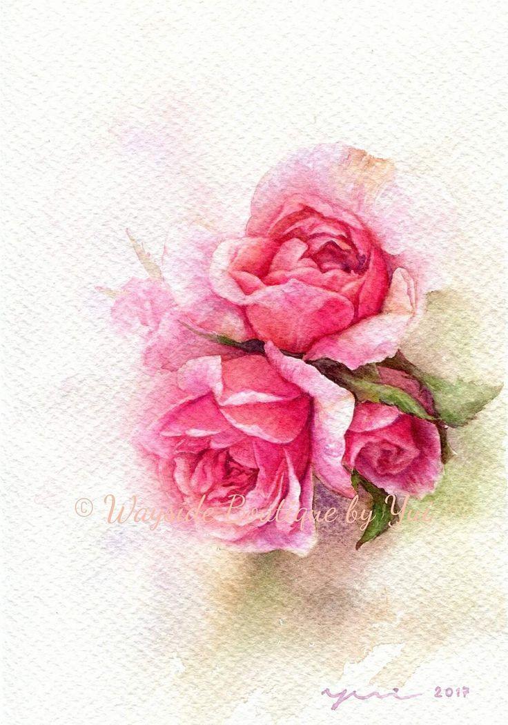 Print Pink Roses Watercolor Painting 7 5 X 11 Aquarellmalerei Rosa Rose Aquarell