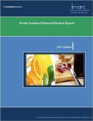 The report provides an in-depth analysis of the global market for pectin.