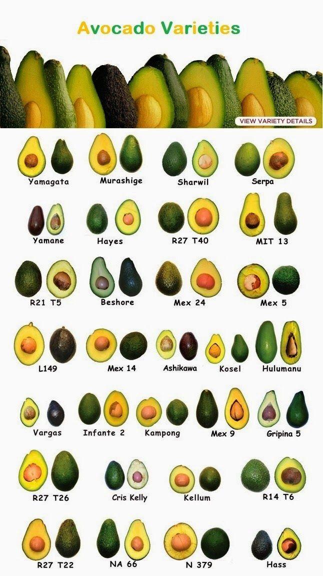 Naturally Grown Foods List