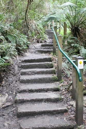 Mt Dandenong 1000 Steps - Mount Dandenong is both a mountain and small township/suburb of Greater Melbourne, Victoria, Australia, 35 km east from Melbourne's central business district. Its local government area is the Shire of Yarra Ranges . . . i wonder if i will be able to climb1000 steps !!!