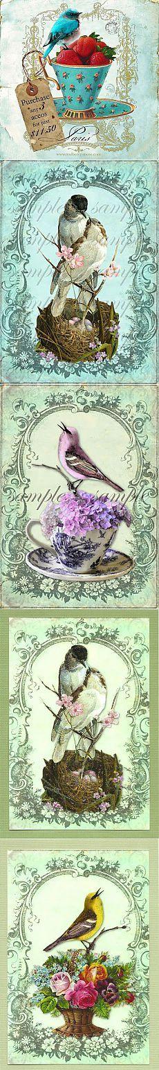2 часть. Винтажные картинки с птицами.   Творческая мастерская Марины Трублиной