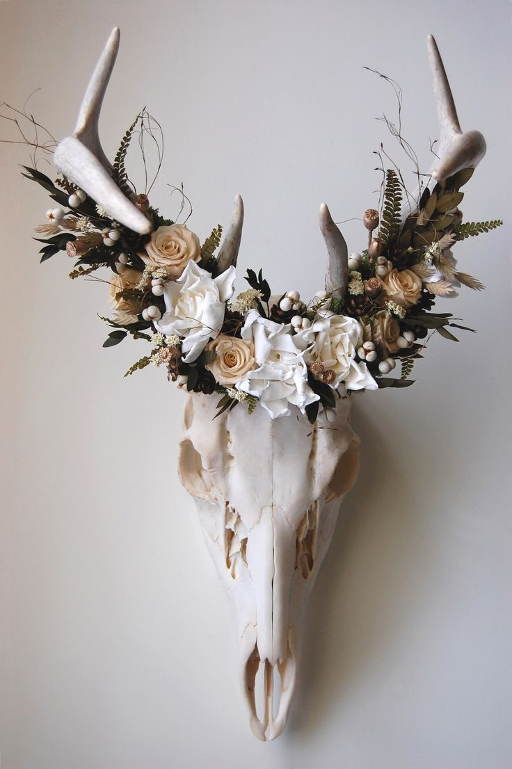 Meghanlacroix Com Deer Skull With Preserved Flower Crown