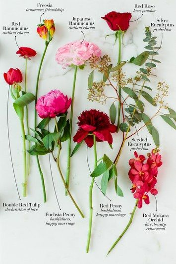 Bridal bouquet knowledge and inspiration