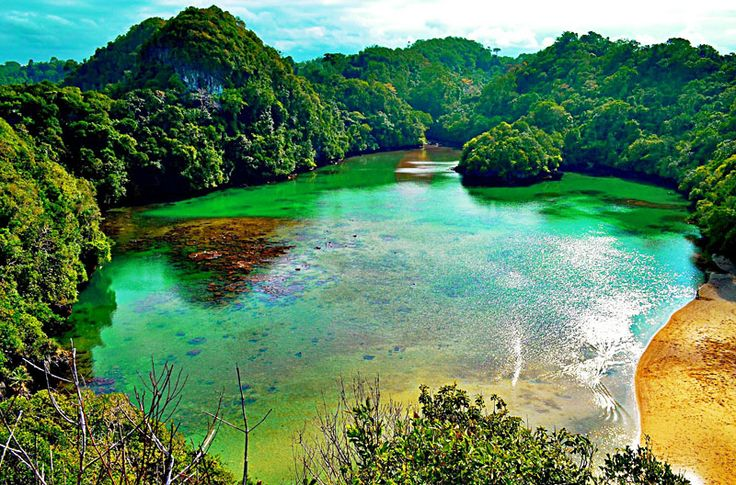 Sempu Island is a small island that is still in one location with the Blue Spring Beach, precisely in the Village Tambakrejo, District Sumbermanjing Wetan, Malang. The island is under the auspices of the Natural Resources Conservation Center.  At first officially since 1928, Sempu island is a nature reserve which has a variety of ecosystems such as coastal forests, mangrove forests, and lowland tropical forests.