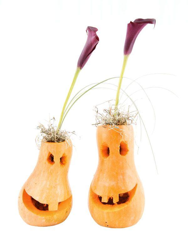 Осенние композиции из тыквы. Одна голова хорошо, две – лучше. Фиолетовую каллу сажаем в«гнездо» из комнатного растения тилландсии уснеевидной (испанский мох)