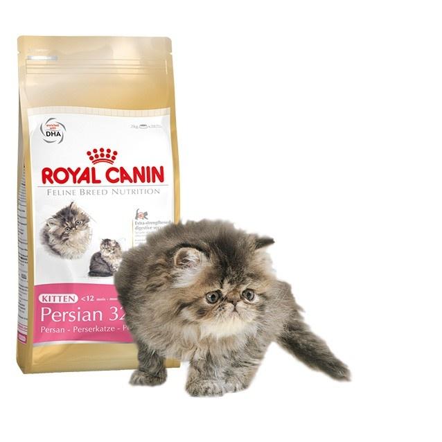 Alimento específico para #gato #Persa   #Maskokotas #RoyalCanin #gato #cat Kitten Persian 32 Royal Canin Maskokotas