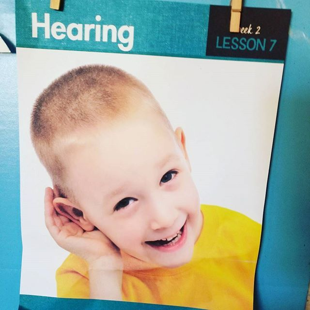 Learning about hearing with Experience Early Learning #myamazingbody theme #MGTb… – My Healthy Body Preschool Theme    Mother Goose Time